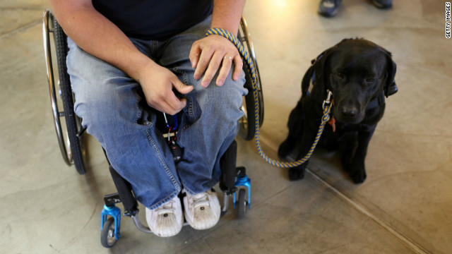 What you don't know about Service Dogs ...